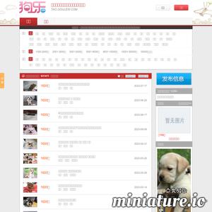 狗乐淘狗网 - 买狗_卖狗_宠物狗交易网 - 狗乐网