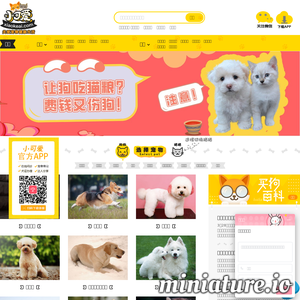 小可爱宠物网_宠物猫狗品种及图片视频_宠物猫咪狗狗专业平台